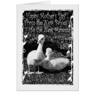 Mother's Day from New Twins Greeting Card