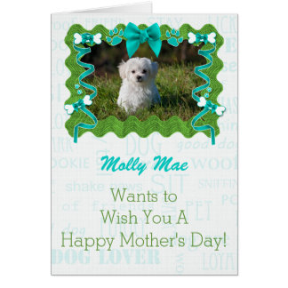 Mother's Day from the Dog in Green and Turquoise Greeting Card