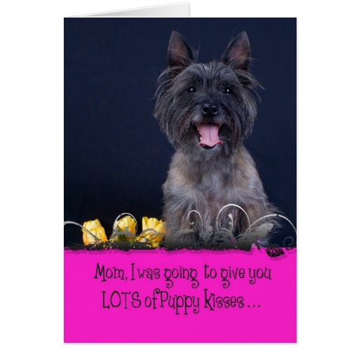 Mother's Day Licker License Cards