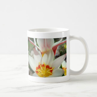 MOTHER'S DAY MUGS GIFTS 1 Tulip Flowers Garden