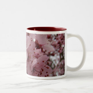 MOTHER'S DAY MUGS GIFTS 6 Spring Tree Blossoms