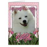 Mothers Day - Pink Tulips - American Eskimo