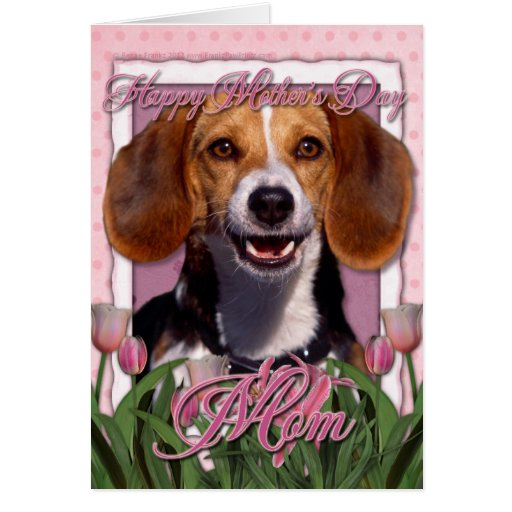 Mothers Day - Pink Tulips - Beagle Greeting Card
