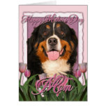 Mothers Day - Pink Tulips - Bernese Mountain Dog Greeting Cards