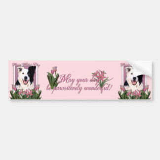 Mothers Day - Pink Tulips - Border Collie Bumper Sticker