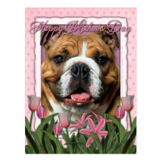Mothers Day - Pink Tulips - Bulldog Postcards