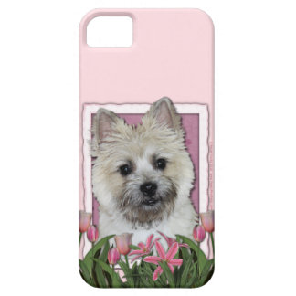 Mothers Day - Pink Tulips - Cairn - Teddy Bear iPhone 5 Cases