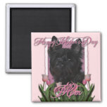 Mothers Day - Pink Tulips - Cairn Terrier - Rosco Square Magnet