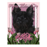 Mothers Day - Pink Tulips - Cairn Terrier - Rosco Postcard