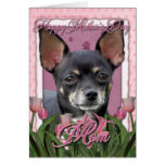 Mothers Day - Pink Tulips - Chihuahua - Isabella