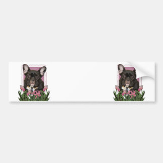 Mothers Day - Pink Tulips - Frenchie - Teal Bumper Stickers
