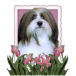 Mothers Day - Pink Tulips - Havanese Acrylic Cut Outs