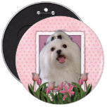 Mothers Day - Pink Tulips - Maltese 6 Cm Round Badge