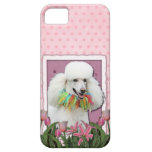 Mothers Day - Pink Tulips - Poodle - White Case For The iPhone 5