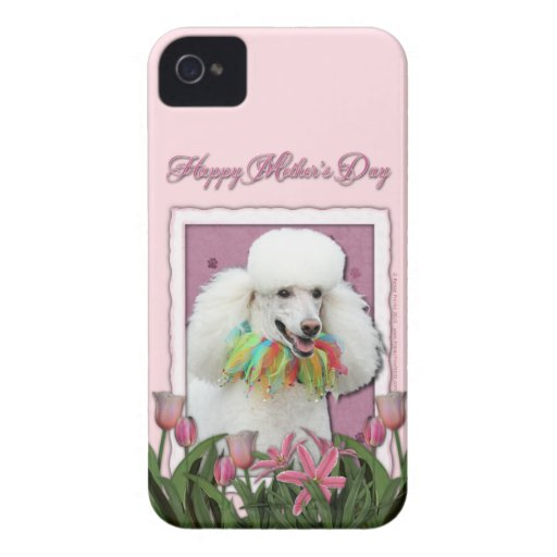 Mothers Day - Pink Tulips - Poodle - White iPhone 4 Cases