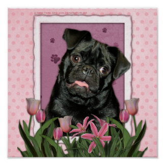 Mothers Day - Pink Tulips - Pug - Ruffy Poster