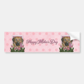 Mothers Day - Pink Tulips - Rhodesian Ridgeback Bumper Stickers