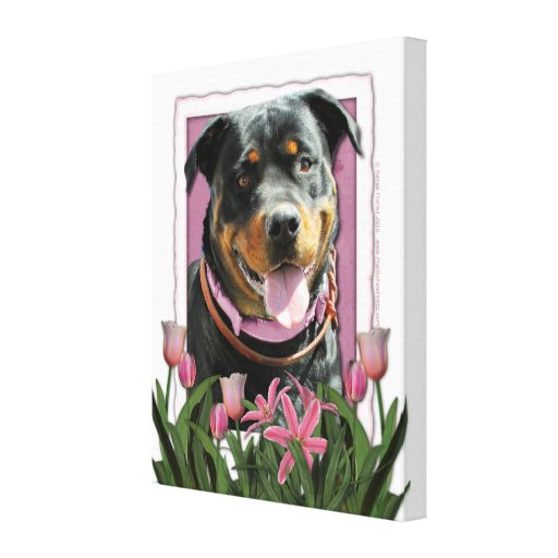 Mothers Day - Pink Tulips - Rottweiler - SambaParT Stretched Canvas Print