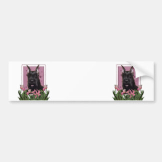Mothers Day - Pink Tulips - Schnauzer Bumper Stickers