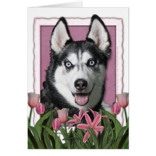 Mothers Day - Pink Tulips - Siberian Husky