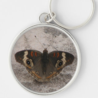 Moths wing pattern of a snakes head key ring