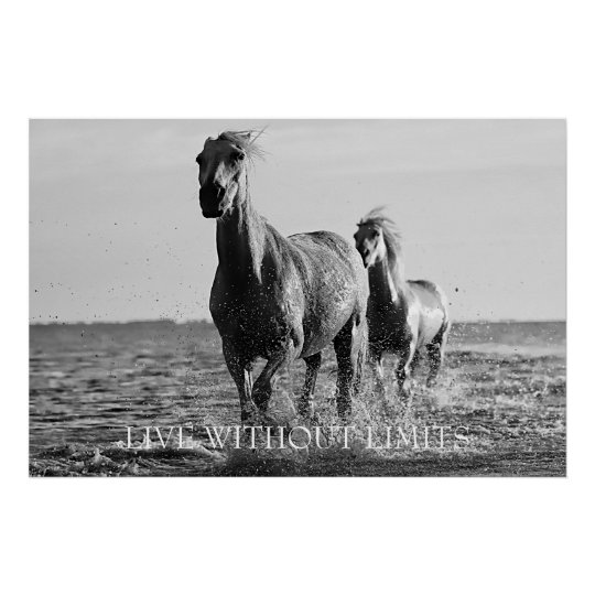 Motivational Horses Live Without Limits Poster
