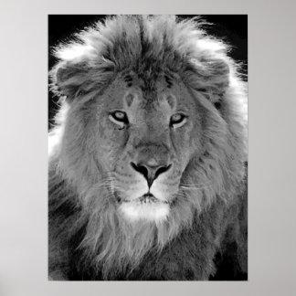 Motivational Leadership Lion Black & White Poster