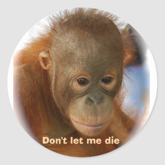 Motivational Love for All Animal Life Classic Round Sticker