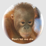 Motivational Love for All Animal Life Round Stickers