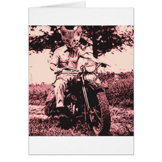 Motorcycle cat card