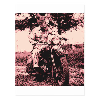 Motorcycle cat postcard