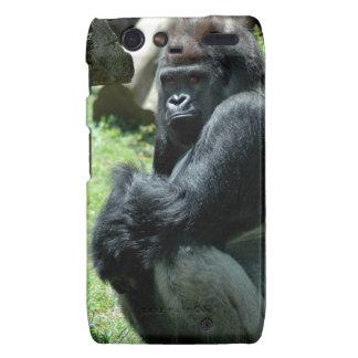 Motorola Razr Case - Customized