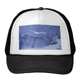 Moulton Falls Washington - Snowy Owl Spirit Cap