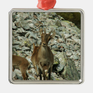 Mounain Goats In Castille Christmas Ornament