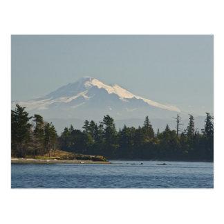 Mount Baker dominates landscape Postcard