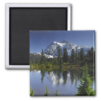 Mount Baker-Snoqualmie National Forest Square Magnet