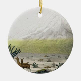 Mount Chimborazo, Ecuador, from 'Le Costume Ancien Round Ceramic Decoration