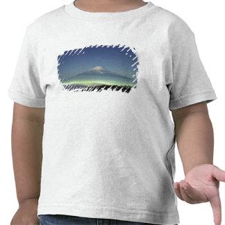 Mount Fuji Tshirts