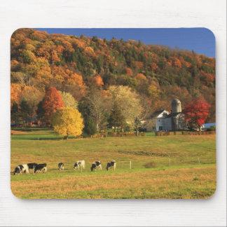 Mount Holyoke Farm in Autumn Mouse Mat