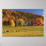 Mount Holyoke Farm in Autumn Posters