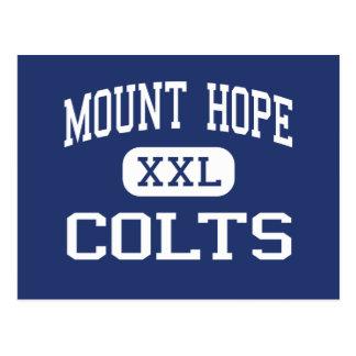 Mount Hope Colts Middle Mount Hope Postcard