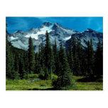 Mount Jefferson, Oregon, USA Post Cards
