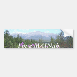 Mount Katahdin and Wildflowers Bumper Sticker
