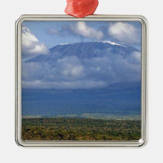Mount Kilimanjaro Tanzania Landmark Landscapes Silver-Colored Square Decoration