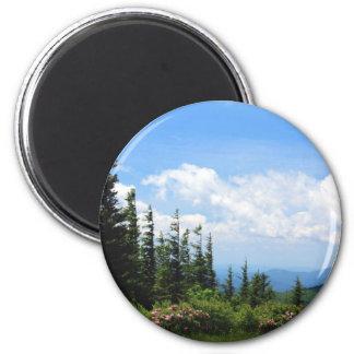 Mount Mitchell State Park Fridge Magnet