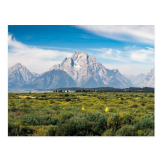 Mount Moran in Grand Teton National Park Postcard