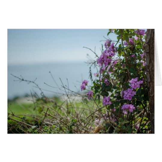 Mount of Beatitudes Greeting Card