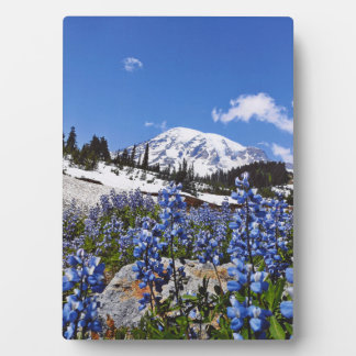 Mount Rainier at Paradise Point Display Plaque