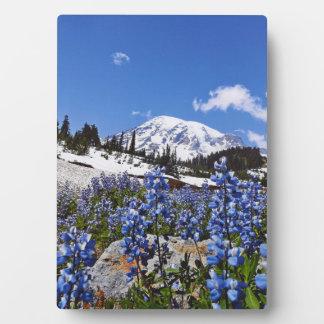 Mount Rainier at Paradise Point Plaque