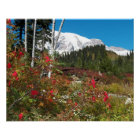 Mount Rainier Autumn Splendour Poster